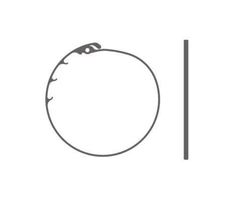 Anneau de tension capsulaire préchargé – Type 19D JET